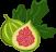 Damianodryfruit